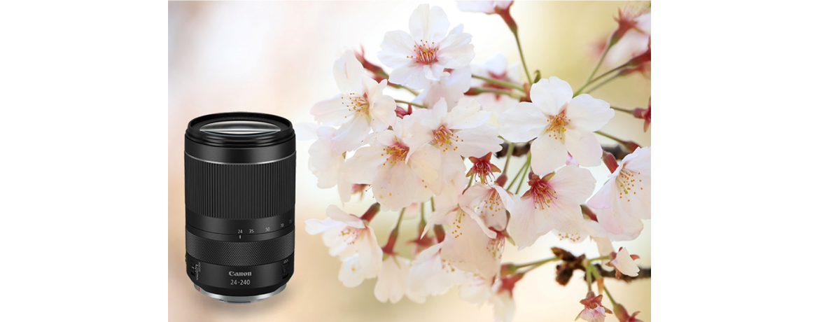 New RF24-240mm f4-6.3 IS USM
